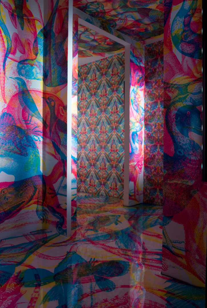 art blog - Carnovsky rgb - empty kingdom
