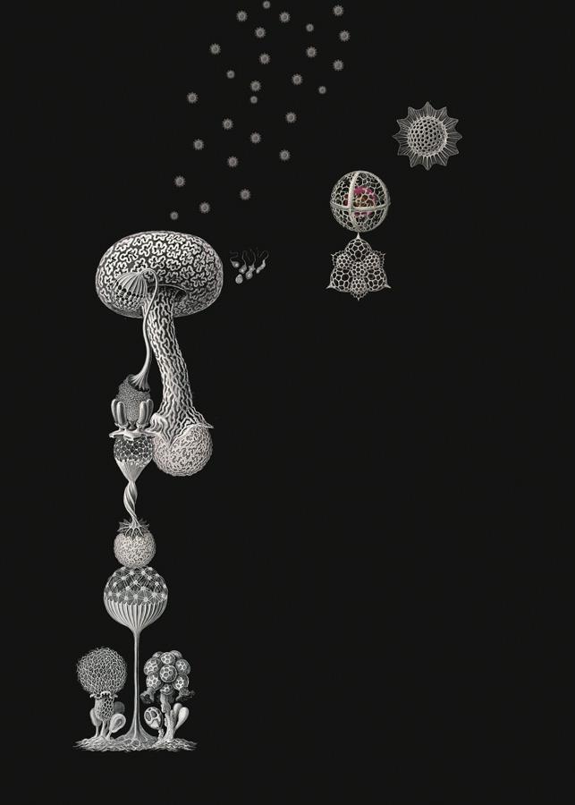 art blog - Luis Toledo - empty kingdom