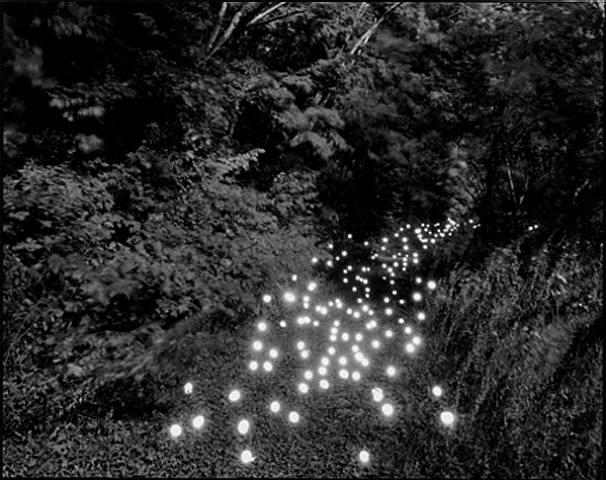 art blog - Tokihiro Sato - Empty Kingdom
