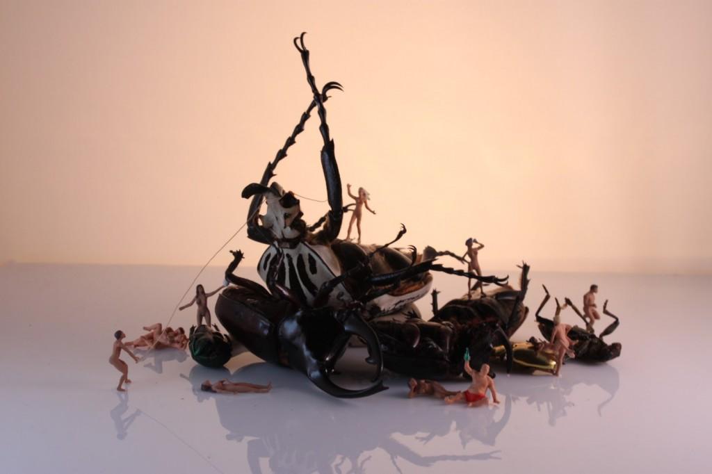 art blog - Cedric Laquieze - empty kingdom