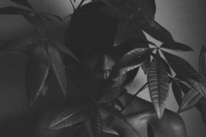 art blog - April-Lea - empty kingdom