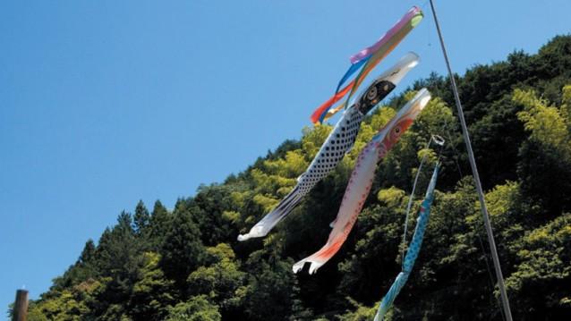 1_e_una-colorata-immagine-del-film-hanezu-no-tsuki-di-naomi-kawase-202291