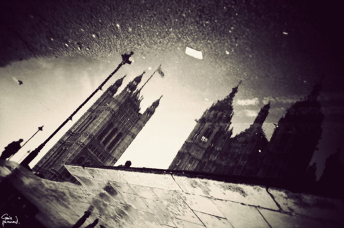 art blog - gavin hammond - empty kingdom
