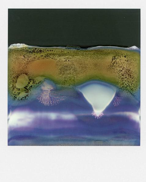 Art Blog - William Miller - Empty Kingdom