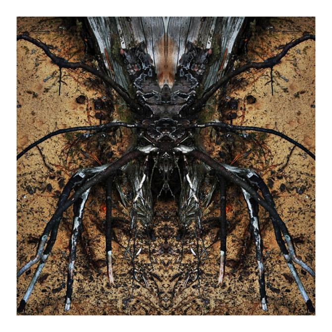 art blog - Irek Kielczyk - empty kingdom