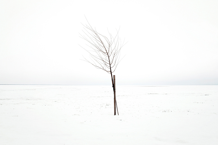 art blog - akos major - empty kingdom