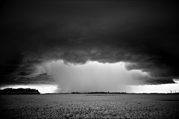 art blog - Mitch Dobrowner - empty kingdom