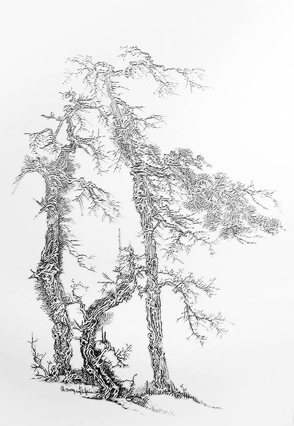 Art Blog - Chen Chun Hao - Empty Kingdom