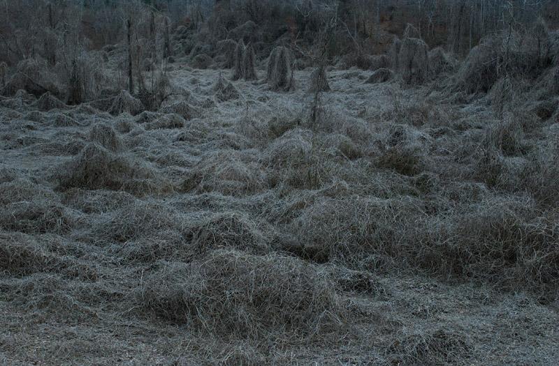 art blog - Alan Spearman - empty kingdom