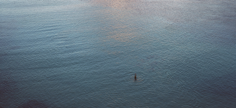 art blog - richard misrach - empty kingdom