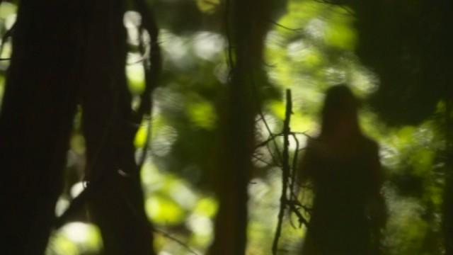 1_e_Sophia-Takal-_Green