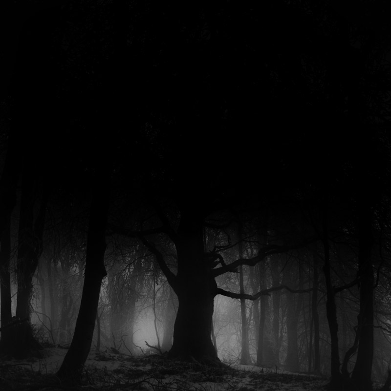 art blog - Janek Sedlar - empty kingdom
