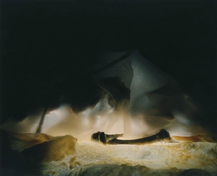 Art Blog - Nadege Meriau - Empty Kingdom