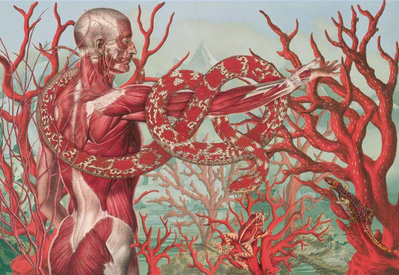 art blog - Juan Gatti - empty kingdom