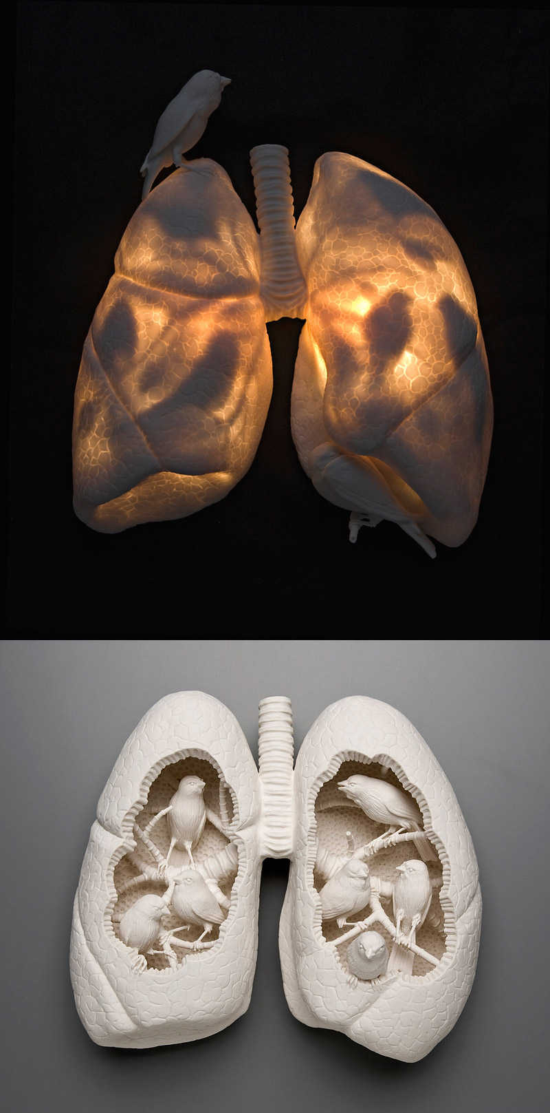 art blog - Kate MacDowell - empty kingdom