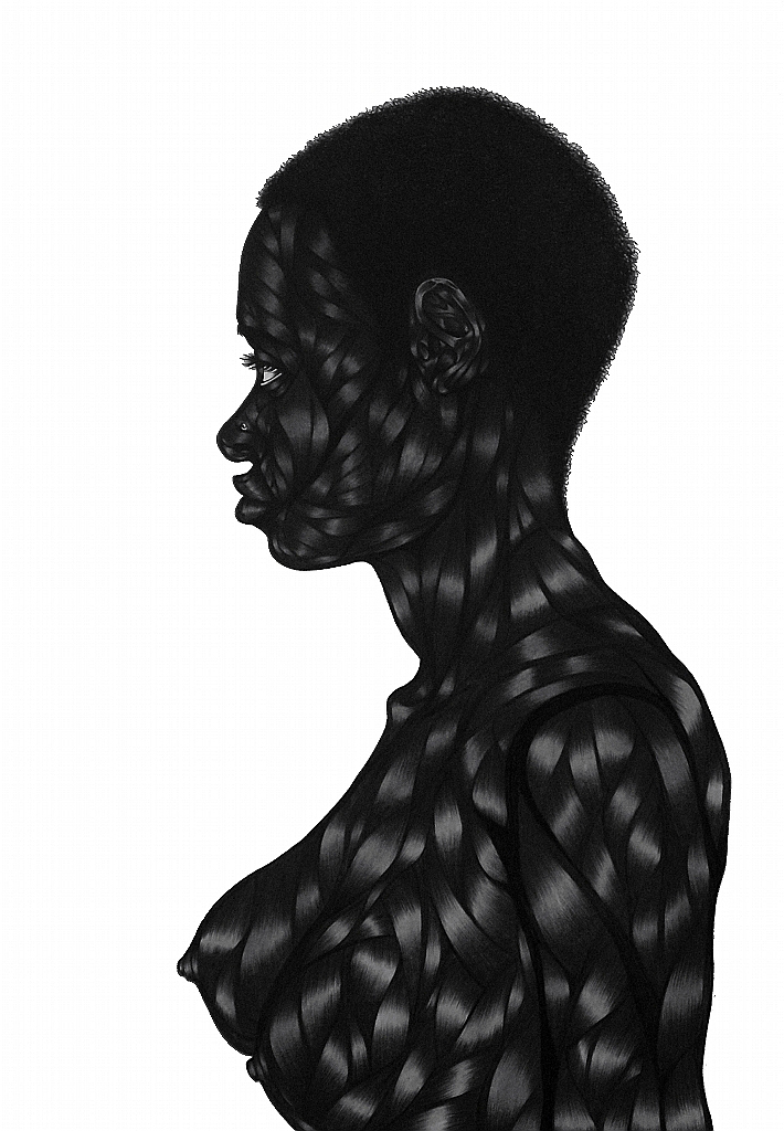 Art Blog - Toyin Odutola - Empty Kingdom