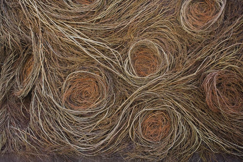 Art Blog - Patrick Dougherty - Empty Kingdom