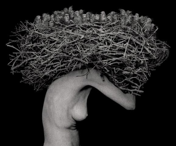 Art Blog - Roberto Kusterle - Empty Kingdom
