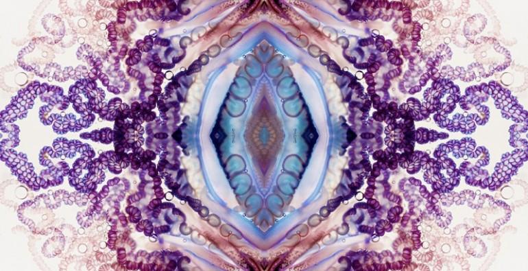 art blog - Aaron Ansarov - empty kingdom