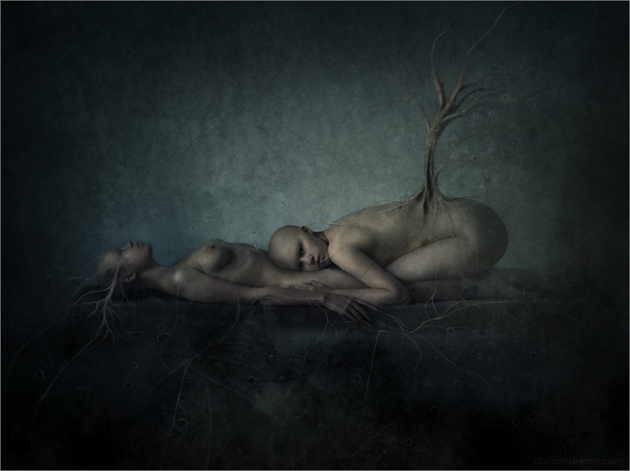 Daria Endresen - Empty Kingdom - Art Blog