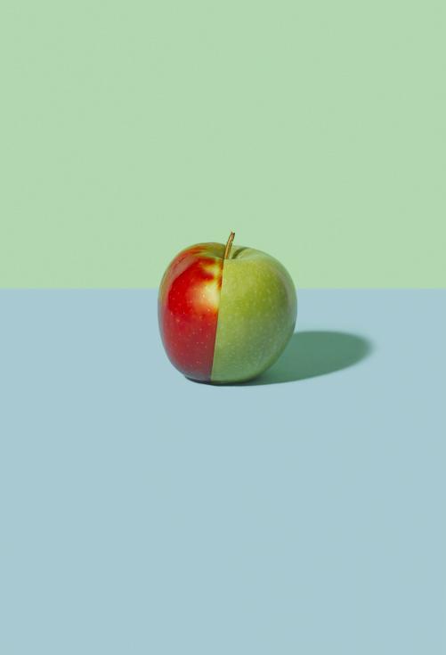 Sonia Rentsch - Empty Kingdom - Art Blog