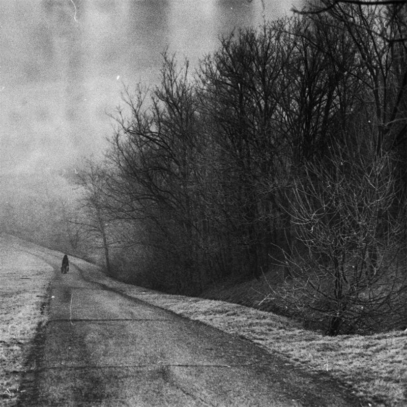 art blog - Tamás Andok - empty kingdom