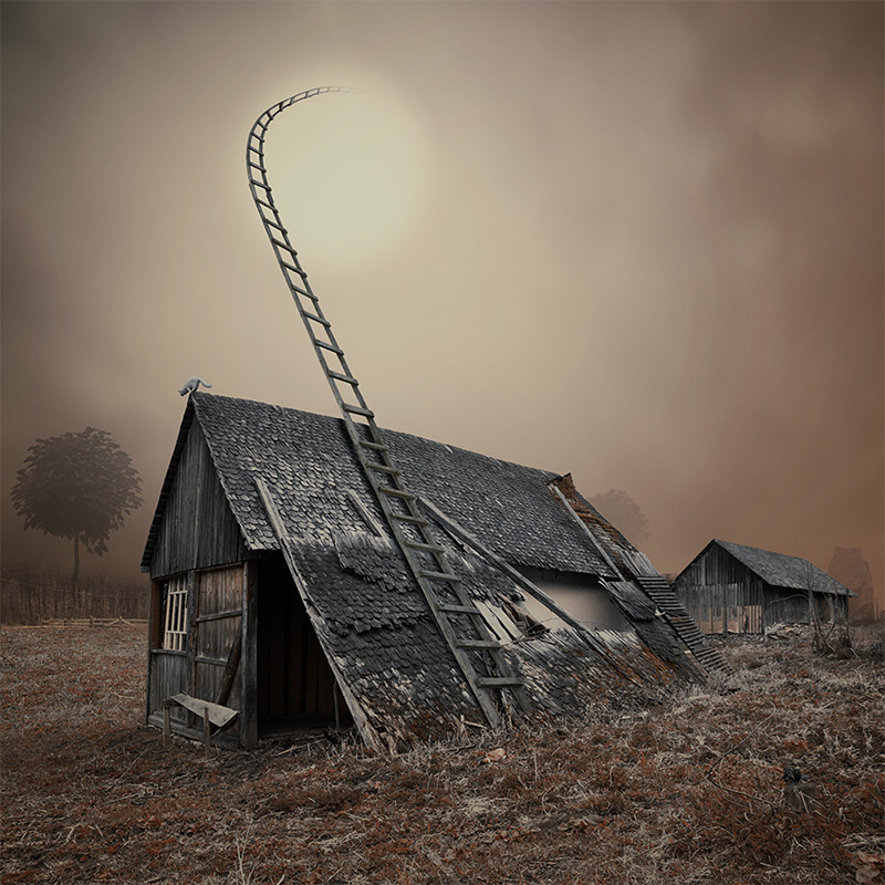 Caras Ionut - Empty Kingdom - Art Blog