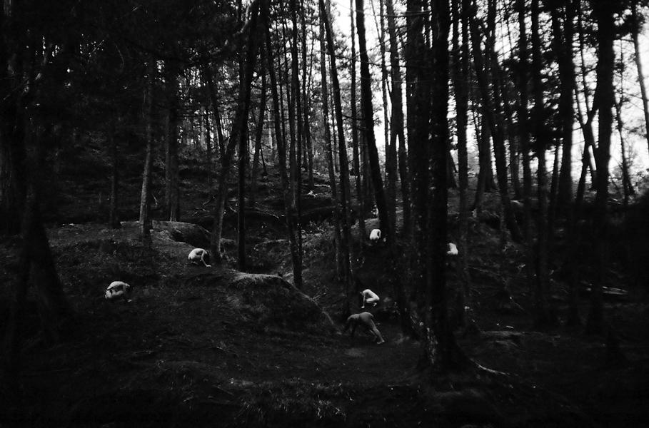 Daniel Gonzalez - Empty Kingdom - Art Blog