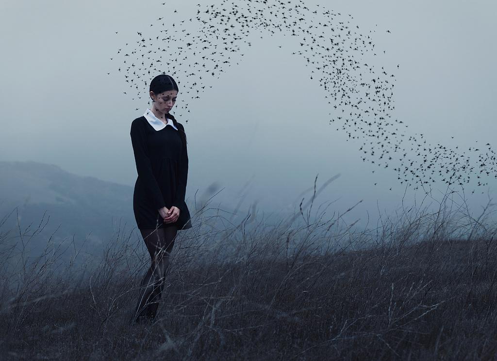Alex Stoddard - Empty Kingdom - Art Blog