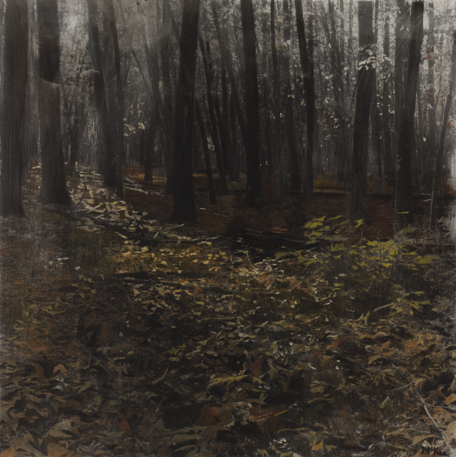 Forest-Floor_120-x-120-cm