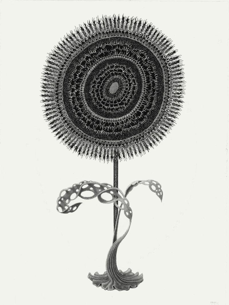 Armando Veve - Empty Kingdom - Art Blog
