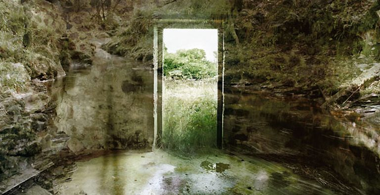 Carolyn Lefley - Empty Kingdom - Art Blog